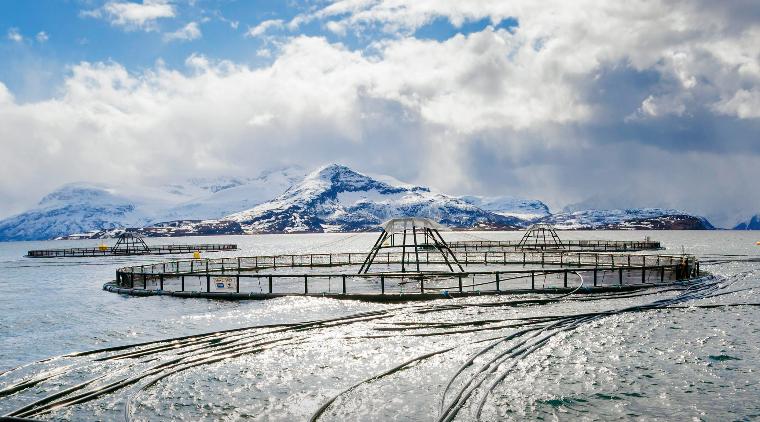 Lerøy Seafood oppdrettsanlegg
